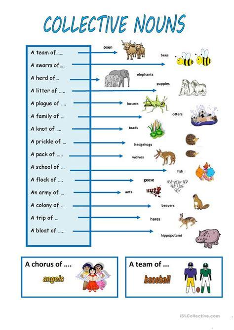 collective nouns worksheet  esl printable worksheets
