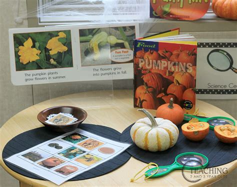 how to set up your preschool learning centers 761 | science pumpkins