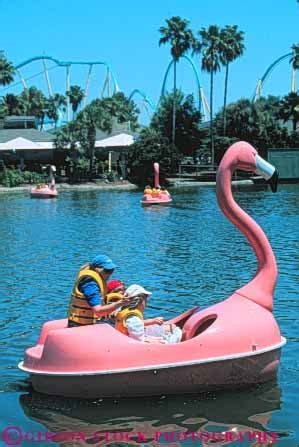 Paddle Boats Orlando Florida by Flamingo Paddle Boat Ride Sea World Orlando Florida Stock