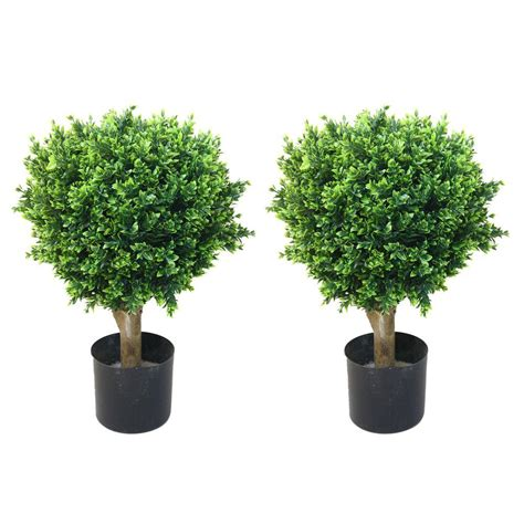 Romano 2 ft. Hedyotis Topiary Trees (2-Pack)-50-10008-R