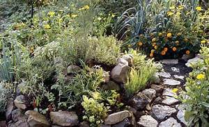 Steingarten Bilder Beispiele : steingarten ~ Whattoseeinmadrid.com Haus und Dekorationen