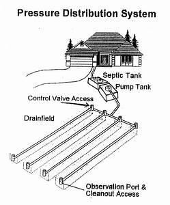 Lilly U0026 39 S Septic Tank Service