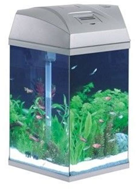 fish tanks on fish tanks aquarium and power led