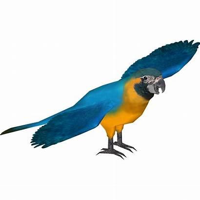Macaw Throated Bite Sneke Wikia Tycoon Zoo