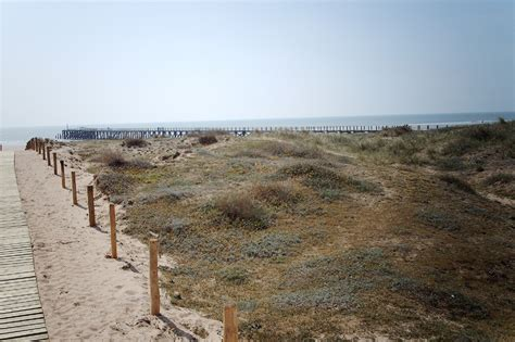 chambres d hotes ile d yeu jean de monts sa plage ses dunes sa forêt