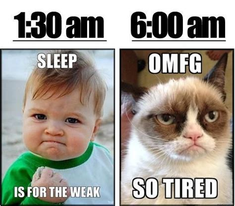 Grumpy Cat Sleep Meme - 65 best memes for narcolepsy sleep images on pinterest baby kittens funny animal and funny