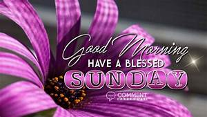 Good Morning Have a Blessed Sunday - Comments, Pics ...