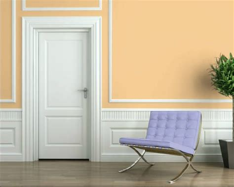Sw 6653 Sherwin Williams Paint Visualizer Delicious Melon