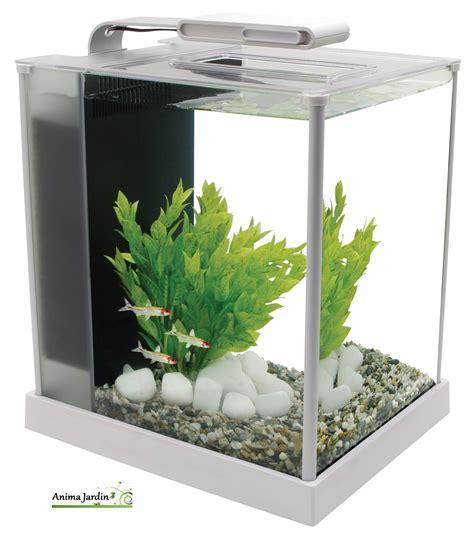 petit aquarium design pas cher petit aquarium