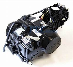 4 Up  Lifan 140cc Oil Cooled Engine Xr  Crf 50 Lf140