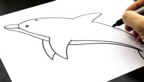 How To Draw A Boat Art Hub by How To Draw A Dolphin Art For Kids Hub Face Painting