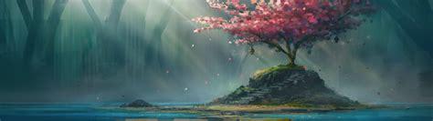 Cherry Blossom Wallpaper Anime Wallpaper Water Cherry Blossom Stairs Aurora Ocean Computer Wallpaper 3840x1080