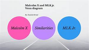 Venn Diagram Of Malcolm X And Mlkjr  By Daniela Bernal