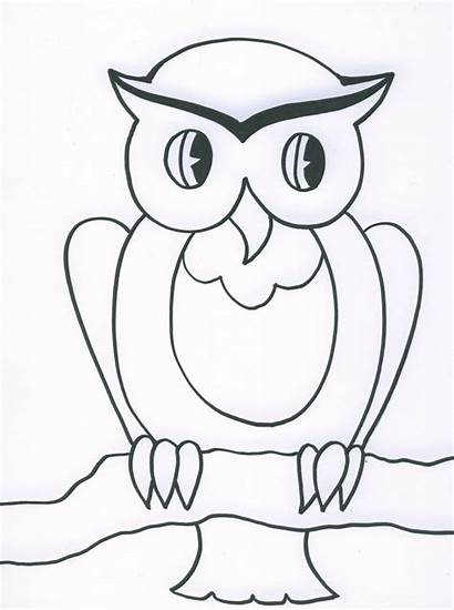 Owl Drawing Drawings Owls Paper Face Coloring