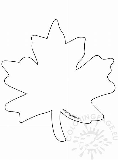 Leaf Coloring Simple Maple Printable Sheet Template