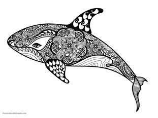 dolphins  whales coloring pages