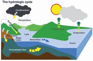 Water Basics  The Hydrologic Cycle