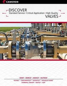 Daily Service Valves Brochure Dsv Expertise