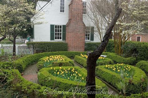 colonial gardens landscaping 164 best images about colonial williamsburg gardens on pinterest gardens virginia and maze