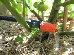 Arrosage Goutte à Goutte Potager : micro arrosage potager ~ Dailycaller-alerts.com Idées de Décoration