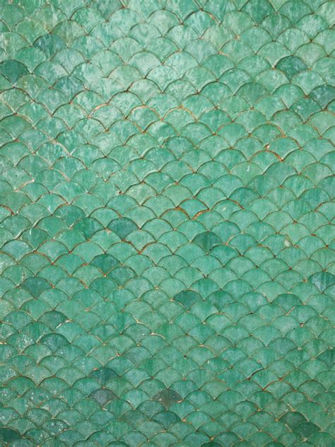 dipaolo designs thanks and moroccan tile inspiration