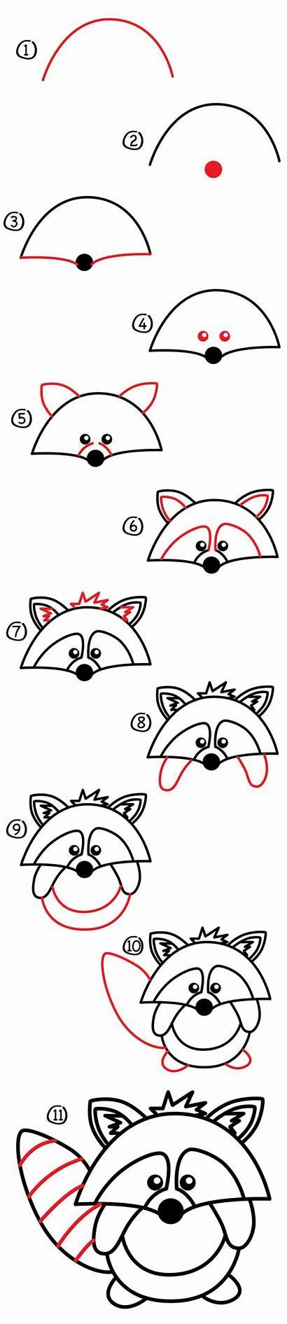 Raccoon Draw Drawing Easy Cartoon Drawings Doodle