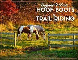 Beginner U0026 39 S Guide To Hoof Boots And Trail Riding