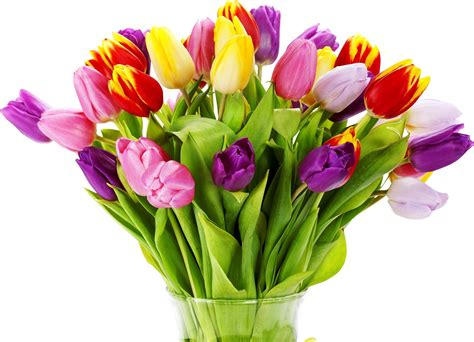 bouquet of flowers send a bouquet of flowers to somebody just to make their day bucket list of things to do