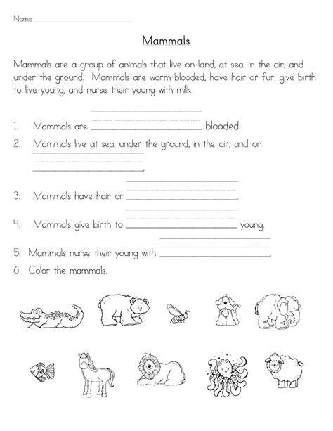 mammals classroom freebies