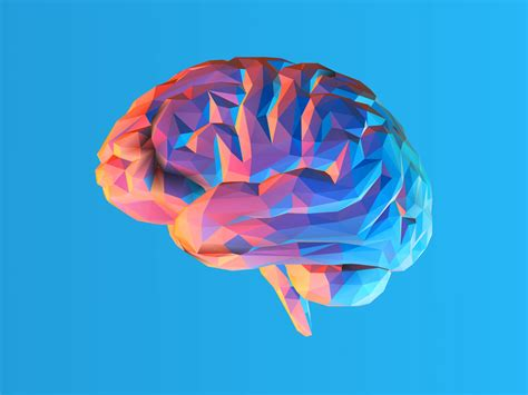 ocd brain scans suggest sufferers
