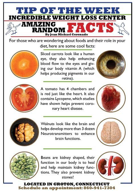 amazing random facts ideal protein pinterest shape