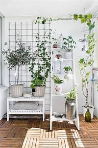 Pflanzen Für Wohnzimmer : 1001 unglaubliche balkon ideen zur inspiration ~ Markanthonyermac.com Haus und Dekorationen