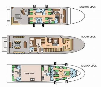 Deck Plans Sky Galapagos Plan Diving Liveaboard