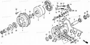 Honda Atv 1986 Oem Parts Diagram For Rear Brake Drum