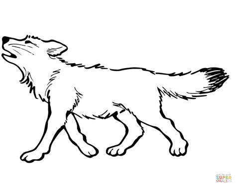 baby wolf coloring page  printable coloring pages