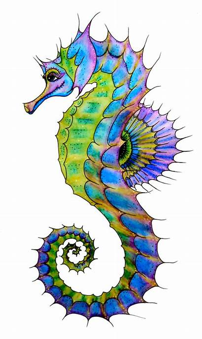 Seahorse Clipart Watercolour