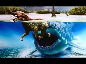 Megalodon Sharks still lives!! Evidence that MEGALODON is ...