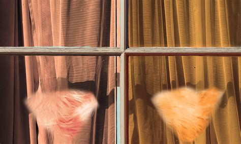 3 Reasons Why You Should Let The Carpet Match The Drapes