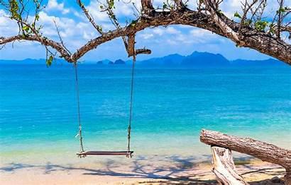 Swing Summer Sea Beach Sand Tropical Clear