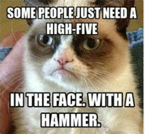Funny Grumpy Cat Memes - 35 very funny evil pictures and images