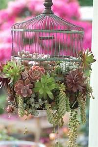 Sukkulenten Für Draußen : deko aus sukkulenten 80 tolle ideen f r drinnen drau en bepflanzung pflanzen und garten deko ~ Watch28wear.com Haus und Dekorationen