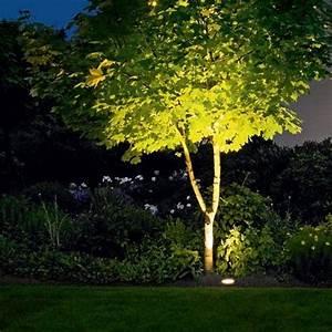 Best outdoor tree lighting ideas on lights