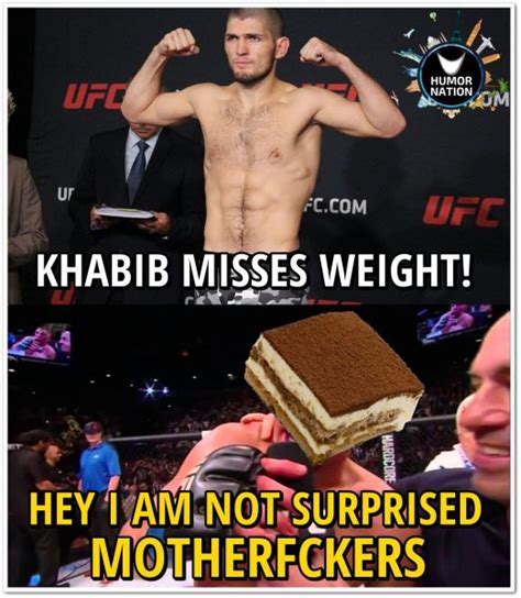 Ufc Memes - hilarious ufc khabib nurmagomedov tiramisu memes that will make you go rofl make the world