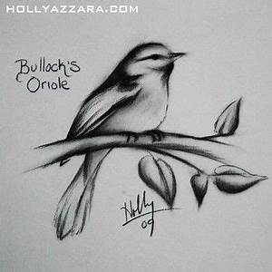 Holly Azzara - Birdy Charcoal | Tattoo Ideas | Pinterest ...
