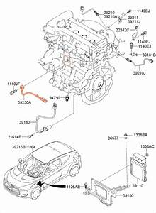 Veloster Turbo Knock Sensor