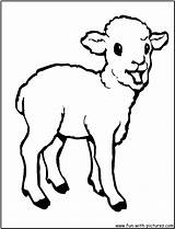 Coloring Animals Pages Lamb Sheep Printable Outline Animal Drawing Farm Clipart Colouring Cartoon Clip Codes Spring Drawings Web Background Sweet sketch template