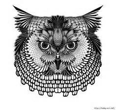gildas  zentangle animals pinterest doodles