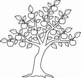Elm Coloring Tree Pages Getcolorings Printable Trees sketch template