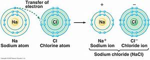 Diagram Ionic Bond Choice Image - How To Guide And Refrence