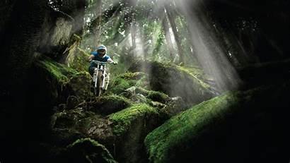 Downhill Mountainbike Gemerkt Von